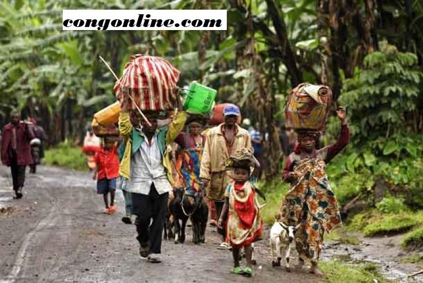 Tinjauan Krisis Politik di DR Kongo dan Hak Asasi Manusia
